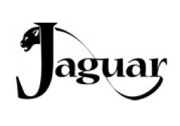 https://carmusicshop.com.ua/image/cache/data/Logo/J-O/Jaguar-255x178.jpg