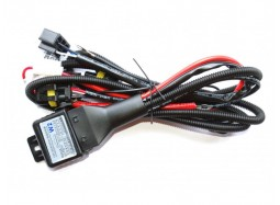Baxster H4 H/L W2 12V 35/55W